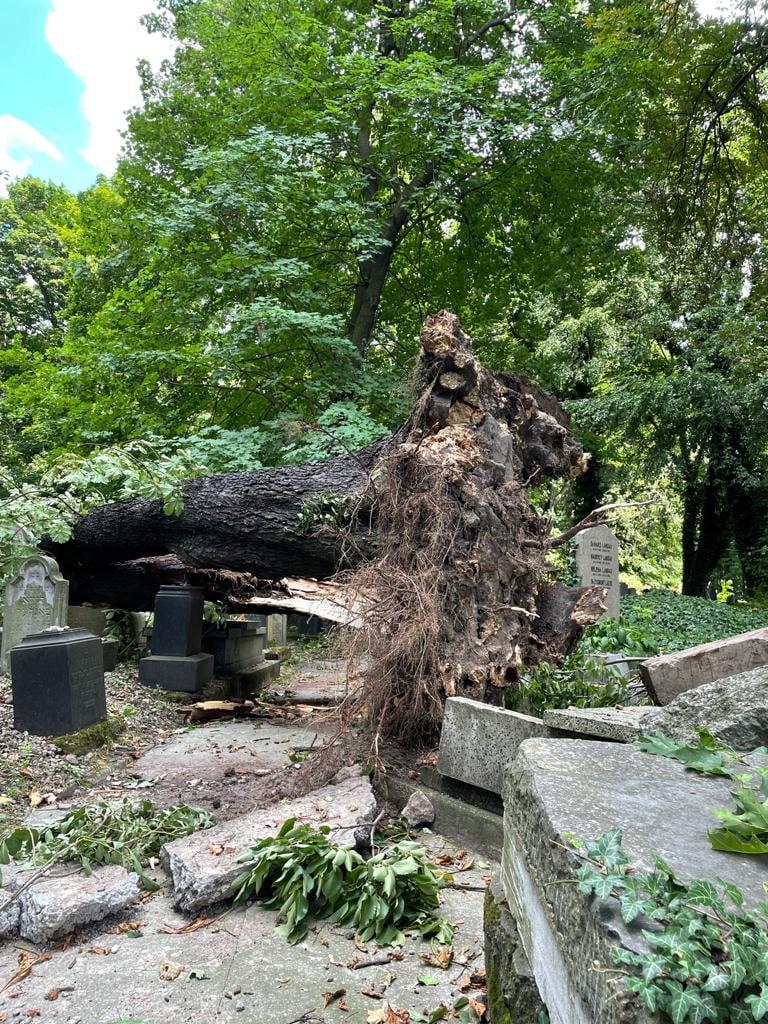 Letarolta a krakkói zsidó temetőt a vihar