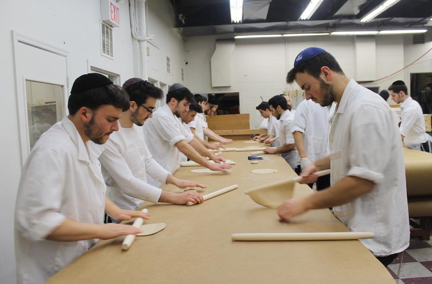 A macesz tésztáját vékony, kerek körré nyújtják lyuggatás és sütés előtt. A brooklyni Satmar Bakeryben a munka 15 percenként megáll, minden felületet lesikálnak, vagy kicserélnek, és mindenki alaposan kezet mos, hogy a legapróbb tésztamaradványokat is eltávolítsák.