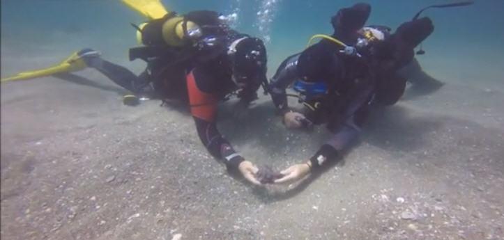 Búvár régészek Keszária partjainál