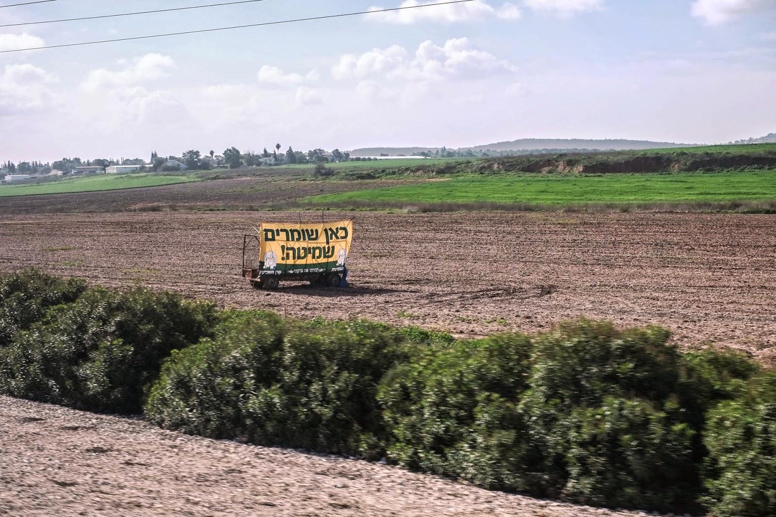 Véget ért a szombat év, szabad földet művelni Izraelben