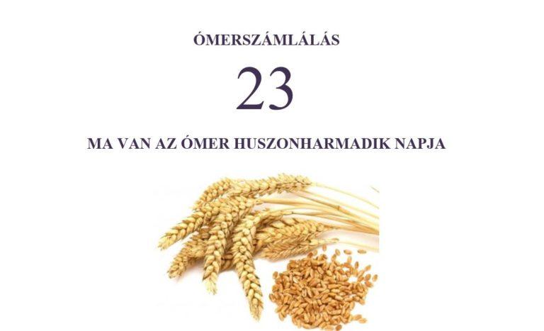 23. nap (3 hét és 2 nap):fegyelmezettség a kitartásban (gvurá sebenecách)