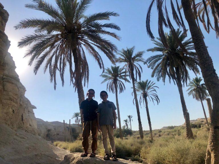 Saul és Joel tóramagyarázatai: Pinchász