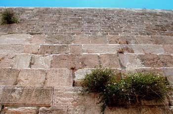 A Szent Fal