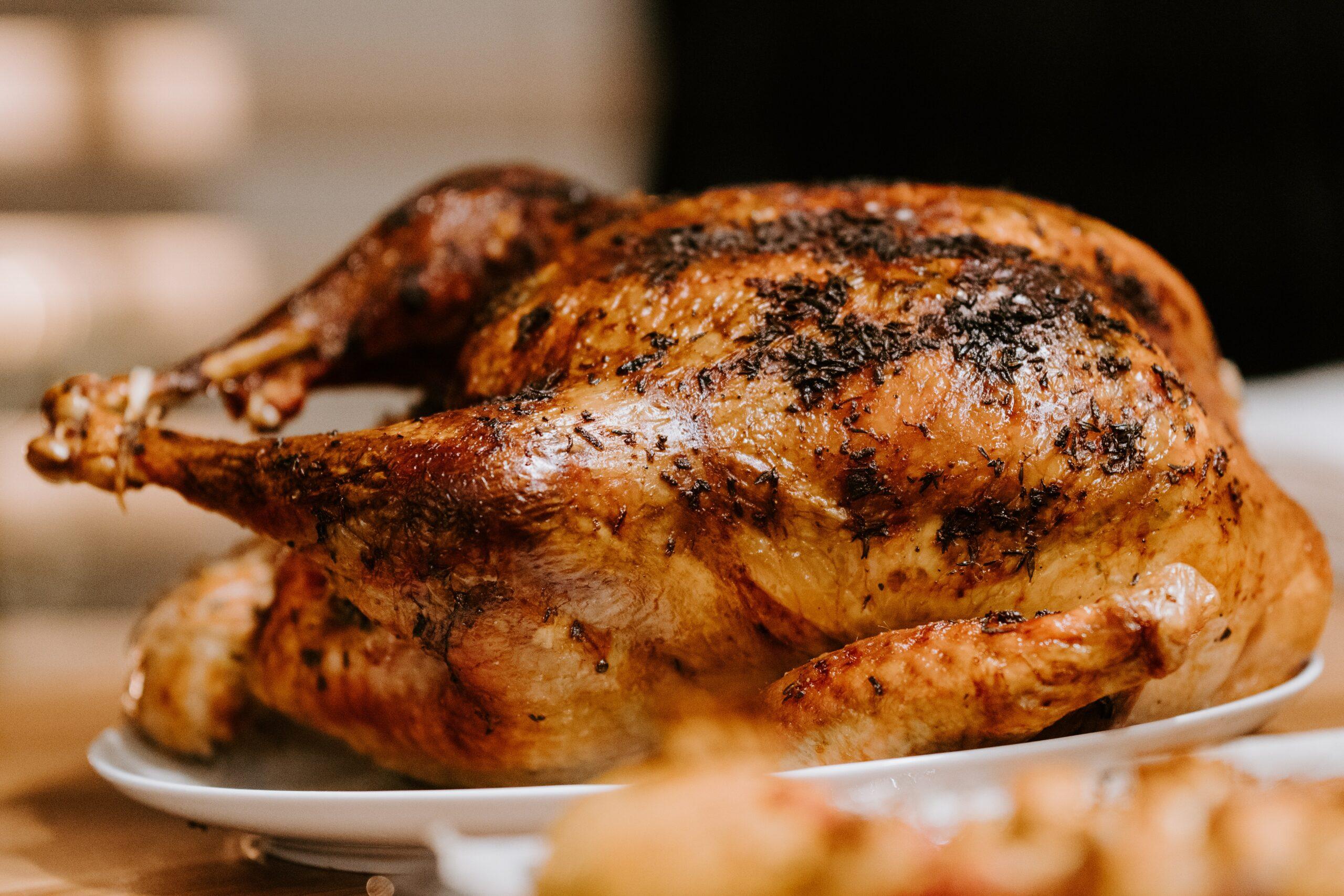 csirke sóágyon