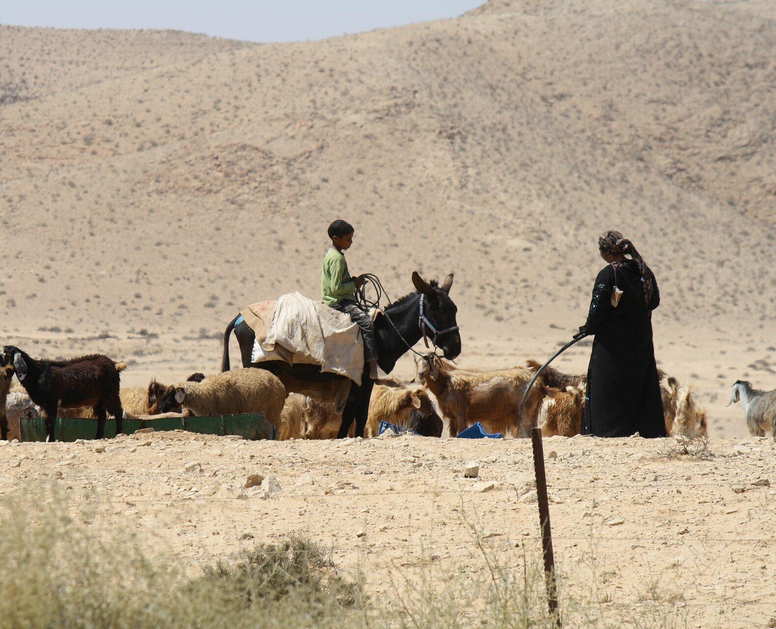Beduin nő