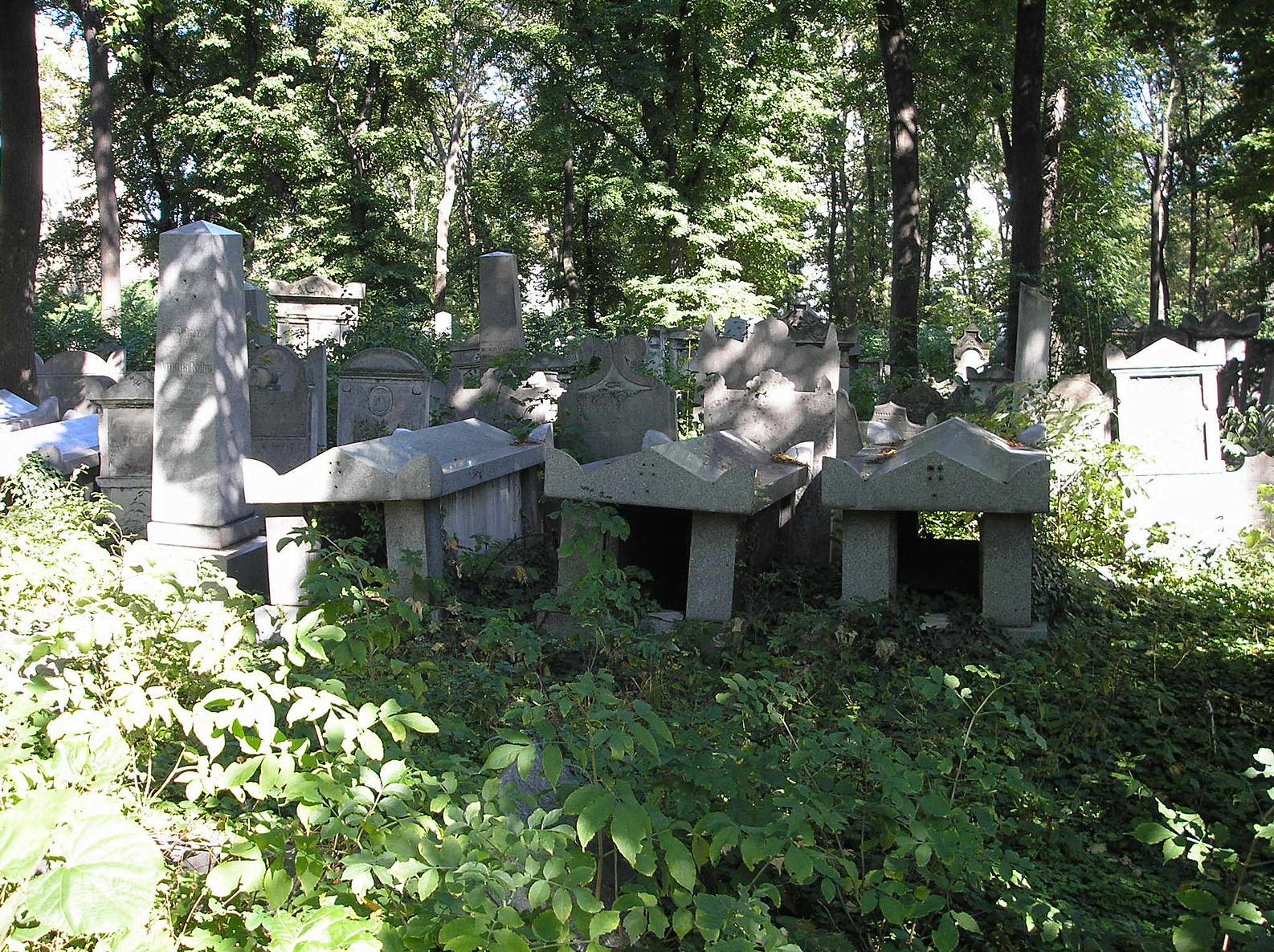 Több lépcsőben rehabilitálják a bécsi zsidó temetőt